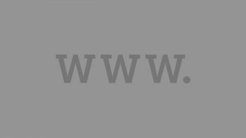 Wallrich Websites