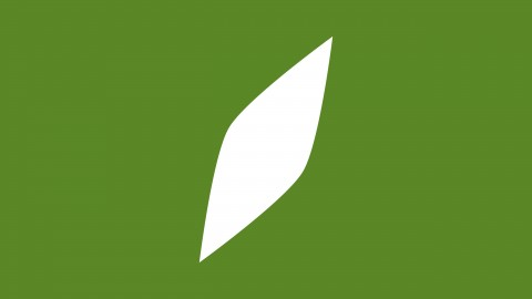 Springer Financial Advisors | Brand Identity