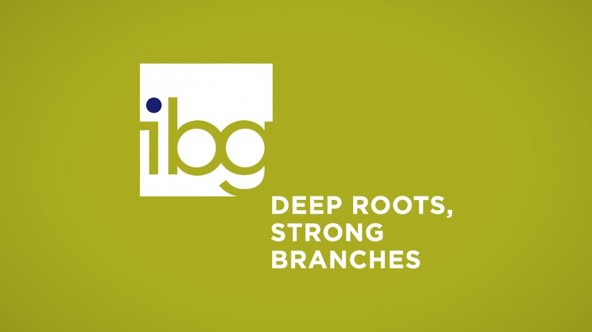 Integrated Builders Group | Brand Identity