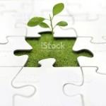 puzzle-plant
